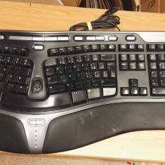 Tastatura PC Ergonomica Microsoft 400 V1.0 Usb SWISS, Cu fir