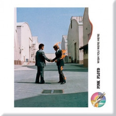 Magnet Pink Floyd - Wish you were here Shake