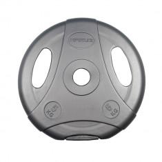 Greutate ciment ergo inSPORTline 10kg/30mm