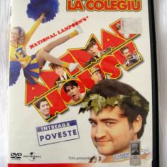 PERIPEȚII LA COLEGIU (ANIMAL HOUSE) [1978] (ORIGINAL, IMPECABIL, CU ROMÂNĂ) - Film comedie, DVD, Romana