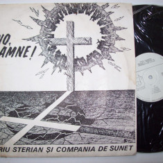 Muzica Rock, VINIL - Disc vinil VALERIU STERIAN & COMPANIA DE SUNET - Vino, Doamne! (ST - CS 0273)
