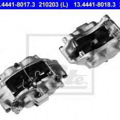 Etrier frana - ATE 13.4441-8017.3 - Arc - Piston - Garnitura Etrier REINZ