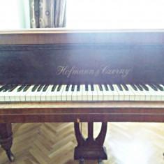 Pian Altele Hofmann & Czerny - de colectie - functional - acordat
