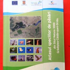 ATLASUL SPECIILOR DE PASARI din Situl Natura 2000 Gradistea-Caldarusani-Dridu - Carte Zoologie