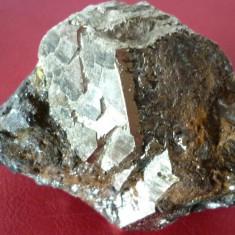 Floare de mina 1 - Fosila roca