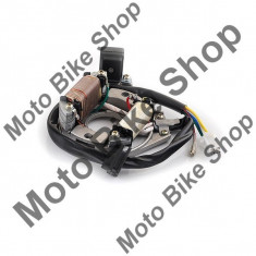 Stator 2 bobine+senzor scanteie PP Cod Produs: MBS030112