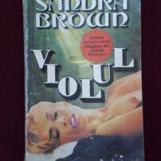 Sandra Brown - Violul - 600077 - Roman dragoste