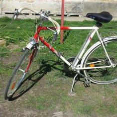 Cursiere, 24 inch, Numar viteze: 18, 28 inch - Bicicleta semicursiera