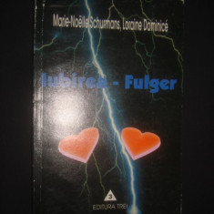 MARIE NOELLE SCHURMANS * LORAINE DIMINICE - IUBIREA FULGER - Carte Sociologie