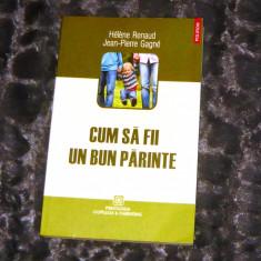 Cum sa fii un bun parinte - 2+1 gratis - CA26 - Carte Ghidul mamei, Polirom