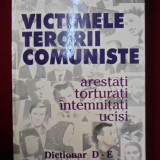 Cicerone Ionitoiu - Victimele terorii comuniste - 528176