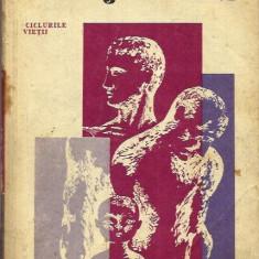 Carte Psihologie - Psihologia varstelor - Ursula Schiopu