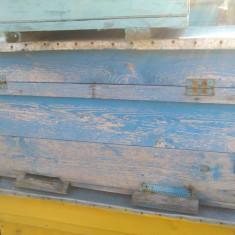 Apicultura - Vand stupi de 21 de rame