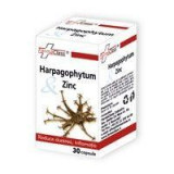 HARPAGOPHITUM &ZINC 30 cps FARMACLASS