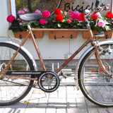Bicicleta de oras Diplomat, import Germania, 21 inch, 26 inch, Numar viteze: 3