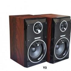 Set boxe audio profesionale Temeisheng DP-Y3 cu stick USB si SD-card - Boxa activa
