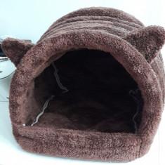 Culcus pisica