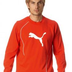 BLUZA SOLEX PUMA MENS FOUNDATION SWEAT red - Bluza barbati Puma, Marime: S, M, L, XL