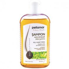 Sampon cu extract de nuc PellAmar