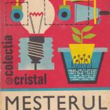Viorel Raducu - Mesterul casei - 686717