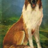 Eric Knight - Lassie se-ntoarce acasa - 671096 - Roman