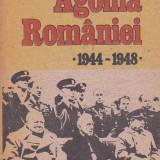 NICOLAE BACIU - AGONIA ROMANIEI 1944-1948 - Istorie
