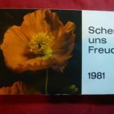Set 14 Ilustrate -in Calendar 1981 - FLORI - RFG - Carte postala tematica, Necirculata, Printata